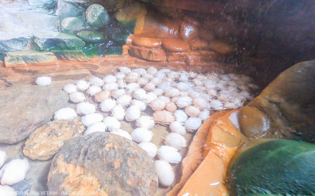 trứng trường sinh núi thần tài