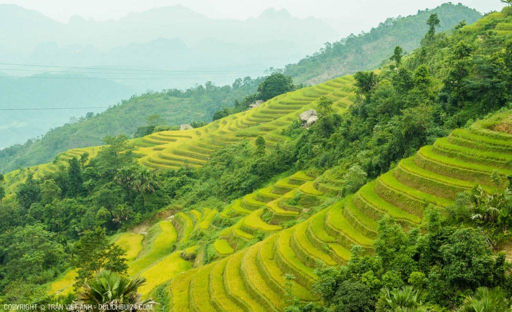 du lịch Hà Giang 3 ngày 3 đêm